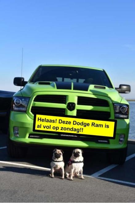 17 juni: Deze Dodge Ram zit vol op zondag. Van deze Dodge zijn er maar 7000 gemaakt waarvan er 4 in Nederland rondrijden! Deze specifieke wagen is nummer 158. Het is een Dodge RAM 1500 Sublime Green. Verdere info:5.7 hemi V8 met 400 pk8 traps automaat.